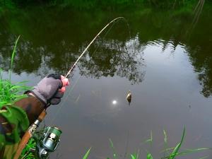 Технология рыбалки