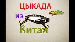 Что такое Цикада! Как ловить рыбу на блесну цикада