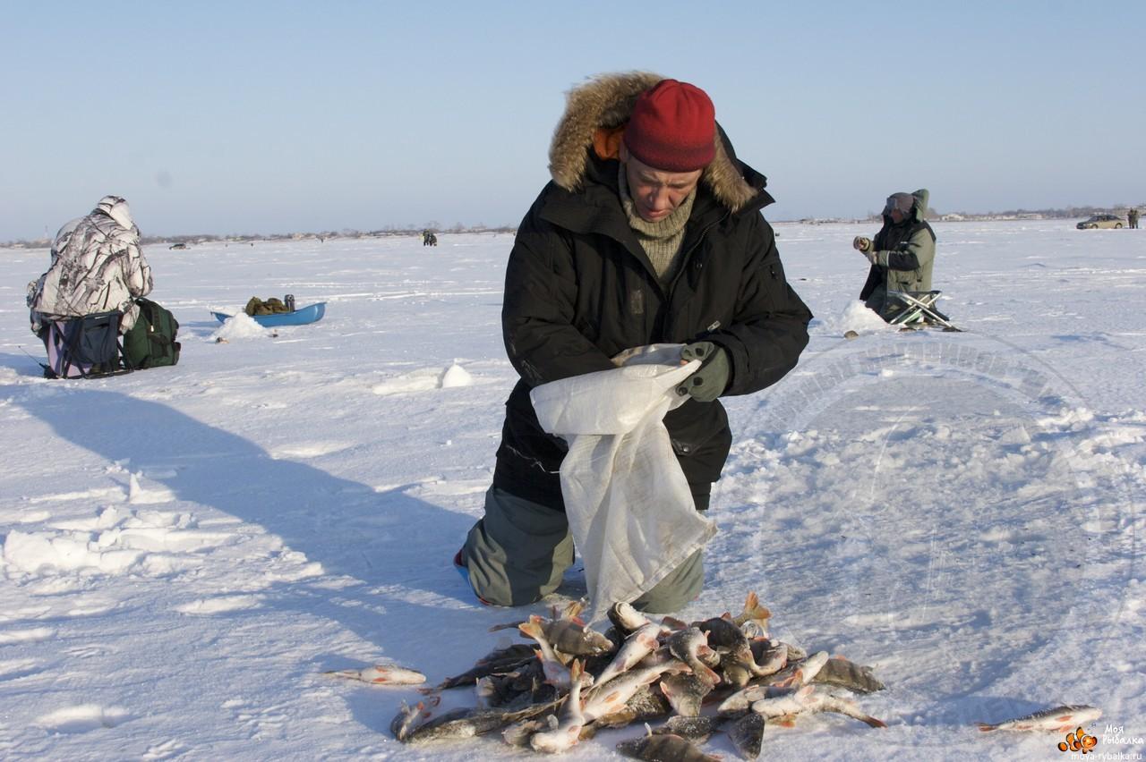 Рыбалка на реке кама в пермском крае