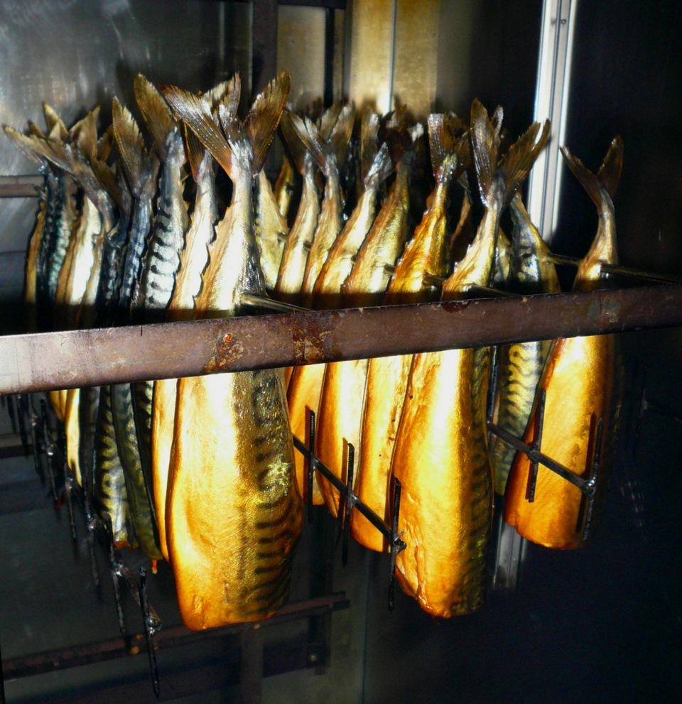 Устройство для копчения рыбы своими руками