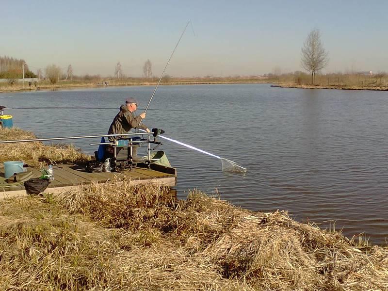 Рыбалка на Стрелецком ручье