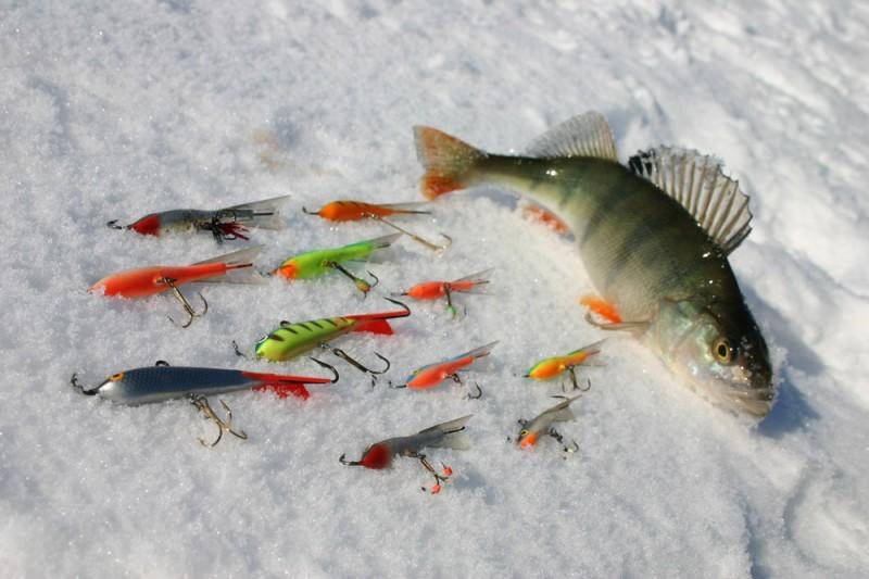 Самоподсекающая удочка для летней рыбалки: устройство, как ловить, отзывы